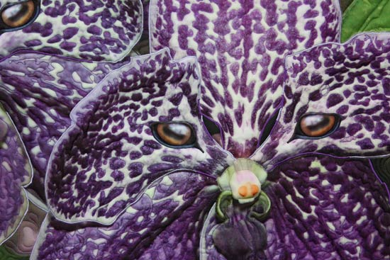 Whimsical Vanda Orchid flower with a mountain sheep's eyes is the